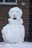 Snow 2017 (tim ellis) Tags: snow suttonpark birmingham uk