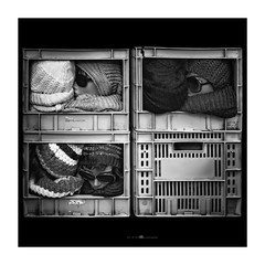 box of brains (paolo paccagnella) Tags: boxofbrains phpph©allrightsreserved blackwhitemasterphotos biancoenero bn bw blackandwhite canon paccagnellapaolo photo foto flickr framework