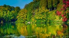Autumn - 4084 (YᗩSᗰIᘉᗴ HᗴᘉS +10 000 000 thx❀) Tags: water autumn automne saison eau lahulpe brabant nature green vert landscape paysage hensyasmine yasminehens belgium belgique europa europe