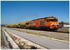 Regueira de Pontes 08-03-15 (P.Soares) Tags: 1900 1905 cp comboio comboios carga cpcarga caminhodeferro train trains tren linha linhas locomotivas locomotiva l