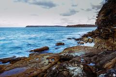 Crator Cove, Sydney (arnimangoes) Tags: sydney sydneyharbourbridge ocean sydneyharbournationalpark australia coast coastal coastalwalk coastline sony a7ii a7markii beach explore travel nswbeaches australianbeaches