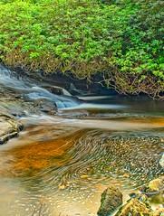 Rapids and Swirls (simondayuk) Tags: dartmoor rapids waterfall countryside devon avon dam nikon d5300 kitlens