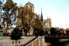 IMG_0888 PARIS , NOTRE DAME  du quai Montebello,  rive-gauche    5eme (closier.christophe) Tags: paris france rivegauche notredamedeparis quaideseine pontaudouble iledelacité