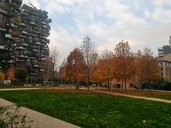Autunno in zona Porta Nuova a Milano (Rivoltana road2) Tags:
