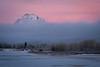 Pink Morning (jpeder55) Tags: xt2 fujifilm grandtetonnationalpark jpedersenphotography snow winter wyoming