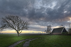 Last Light On The Tree (Alfred Grupstra) Tags: nature ruralscene cloudsky sky landscape grass outdoors tree cloudscape farm scenics field nopeople agriculture nonurbanscene blue meadow overcast dramaticsky barn 934