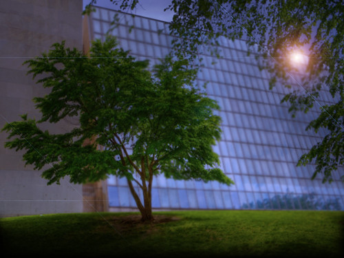 "Museo Metropolitano de Arte  Nueva York, EUA • <a style=""font-size:0.8em;"" href=""http://www.flickr.com/photos/30735181@N00/38010717125/"" target=""_blank"">View on Flickr</a>"