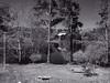 IMG_1914 (Dan Correia) Tags: marthasvineyard island pond reflection photoshop 15fav topv111 topv333