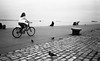 at the dock (Giorgos Voulgaris) Tags: kodaks100ef tmax400 film dock outdoors biker people pigeons bw blackwhite monochrome analog thessaloniki macedoniagreece makedonia timeless macedonian macédoine mazedonien μακεδονια македонија