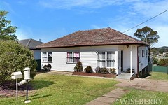 11 Colonial St, Campbelltown NSW