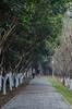Wuhan, Hubei province, China (mcvmjr1971) Tags: 1116mm 2017 china d7000 hubeiprovince inpi nikon sipo wuhan centralchina lenstokina mmoraes tokina travel