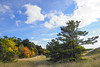 2017.00.03 Public dunes north of the White Lake Channel on Lake Michigan (o IIIIIII o, Jerry Herrendeen) Tags: dune michigan montague autumn clouds fall pine sunny walk