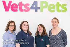 Vets4Pets-17120862 (Lee Live: Photographer) Tags: amydyce animalcareassistant bonnyrigg companioncare councilloradammontgomery cuttingofthecake cuttingtheribbon dog groupshot guineapig leelive lordprovost midlothian operatingtheatre ourdreamphotography petcare pets rabbit staff storeopening surgeon vetnurse veterinarysurgery vets4pets vets4petsbonnyrigg wwwourdreamphotographycom