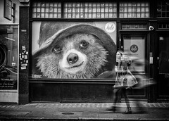 looking at you kid (Daz Smith) Tags: dazsmith fujixt20 fuji xt20 andwhite city streetphotography people candid portrait citylife thecity urban streets uk monochrome blancoynegro blackandwhite mono paddingtonbearbear poster stares watching woman blurred walking soho london