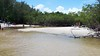 20170620 (15) DuBois Park Jupiter FL USA (Frabjous Daze) Tags: dubois park jupiter palmbeachcounty pbc fl fla florida usa yhdysvallat laguuni lagoon beach ranta mangrove