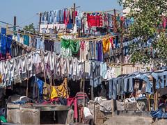 LR Mumbai 2015-738 (hunbille) Tags: birgittemumbai32015lr india mumbai bombay colaba wtc worldtradecenter world trade center slum washing laundry dhobi wallah dhobiwalla walla wala