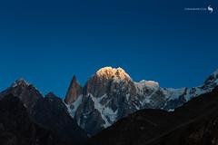 FIRST LIGHT (hisalman) Tags: ladyfinger ultarsar gilgit hunza baltistan pakistan mountain peak nature hisalman firstlight morning