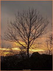 Freundstein - Alsace - Haut Rhin (jamesreed68) Tags: freundstein 68 alsace hautrhin paysage ciel nuage nature grandest france montagne altitude samsung wb30fwb31fwb32f goldbach