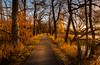 Golden Hour (gbenedicto) Tags: sunset lake woods carlos mn automn
