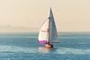 Segler, Bodensee (C3RK4JAKZLXBDPW6RSMOATPEQI) Tags: bodensee segelboot yacht nebelstimmung