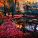 an autumn daydream
