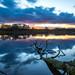 AWD Sunrise LE (Jan Passchier Amsterdam) Tags: sunrise longexposure sky water landscape lake outdoor netherlands