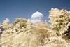 Qutub shah tomb (tirumala nalla) Tags: infrared tombs tomb hyderabad india qutub landscape 650nm qutubshah