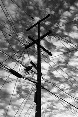 power (eb78) Tags: ca california bw blackandwhite monochrome greyscale grayscale eastbay berkeley telephonepole