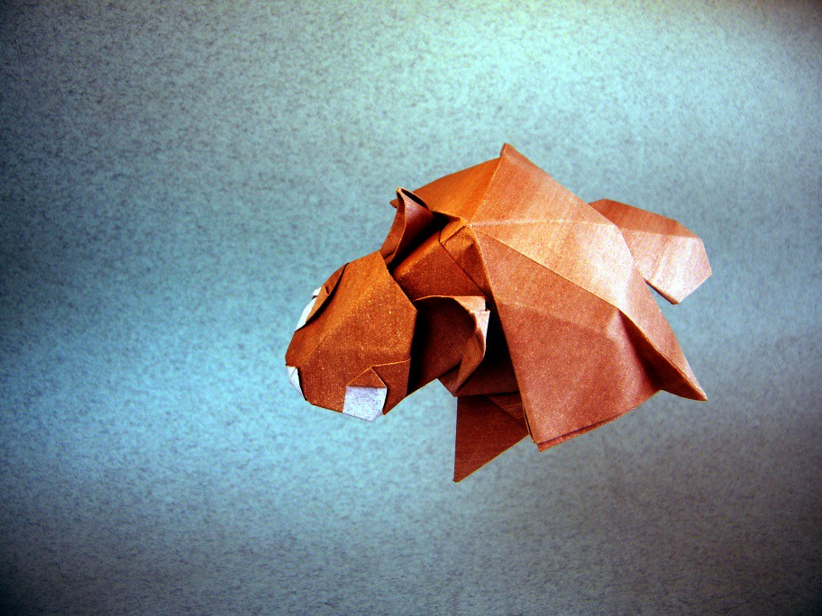 The Worlds Newest Photos Of Origami And Squirrel