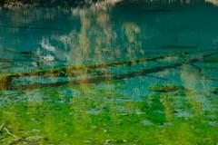DSCF1979 (Lakuda-san) Tags: lac valais troncs lacbleu turquoise arolla switzerland wallis