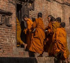 Bhaktapur, Népal (Pascale Jaquet & Olivier Noaillon) Tags: moines religionbouddhisme procession aumônes bhaktapur valléedekatmandou népal npl