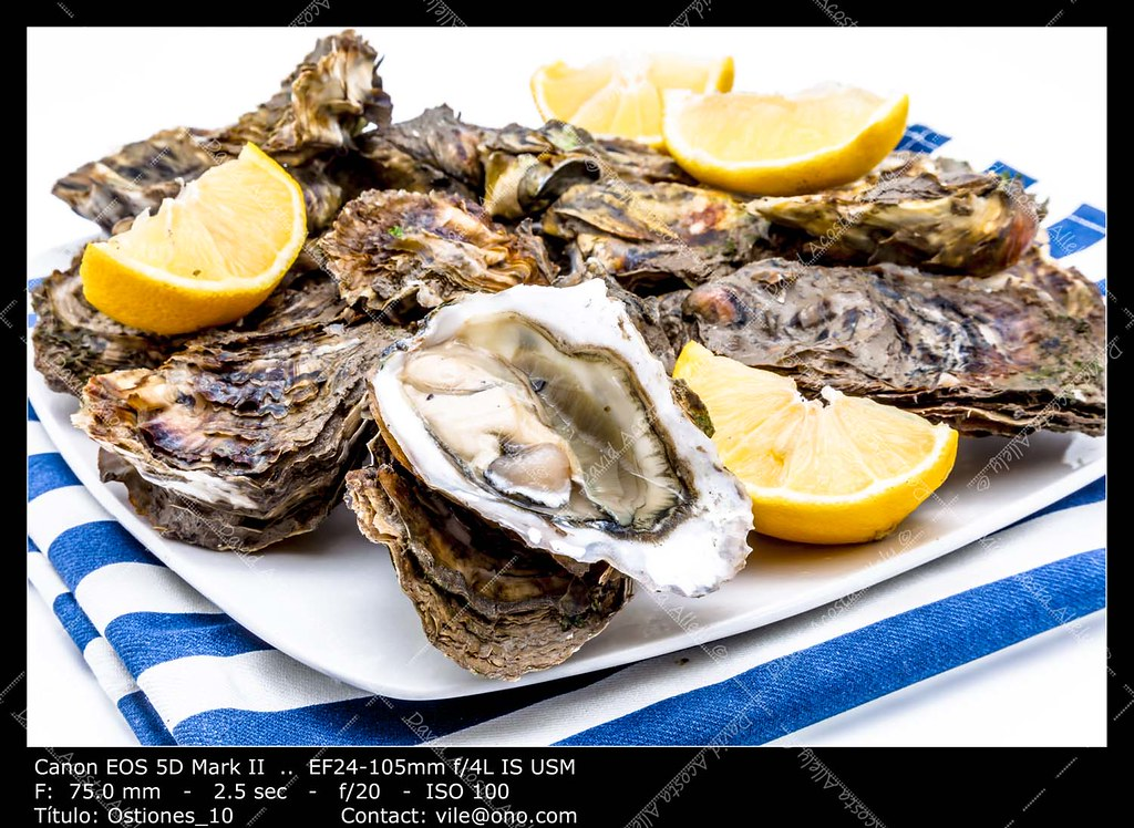 The world 39 s best photos of food and oyster flickr hive mind for Expensive fish to eat