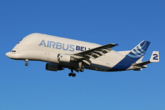 Airbus Transport International A300-600ST F-GSTB (SimonFewkes) Tags: tls lfbo toulouse toulouseairport avgeek aircraft aviation aircraftphotography aeroplanes aviationphotography airport aircraftphotos aircraftspotter aeroplane spotting spottinglog planes plane planespotting fgstb