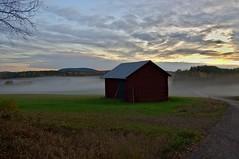 Countryside evening (Stefano Rugolo) Tags: stefanorugolo pentax k5 smcpentaxda1855mmf3556alwr evening barn mist fog countryside landscape hälsingland sweden sverige tree sky