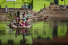 Paschimavahini (puuuuuuuuce) Tags: india bathing river mysore