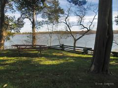 Popes Creek Picnic Area (r.w.dawson) Tags: popescreek park historic westmorelandcounty virginia va usa georgewashingtonsbirthplace picnicarea potomacriver