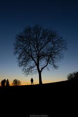 Good spot (Nicola Pezzoli) Tags: colors sunset sky firesky blue italy bergamo leffe peia poiana val gandino seriana nature tree silhouette man
