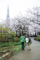 DSC_3439 (維尼賈許) Tags: 2017tokyotrip d610 day7 japan nikon24120mmf4ged tokyotower 增上寺 日本 東京タワー 東京鐵塔 minatoku tōkyōto jp