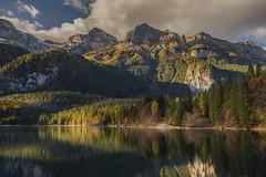 Lago di Tovel (ELIA MORA) Tags: verde valdinon lagoditovel trentino romedio santuario sanromedio reflections mountains adamello brenta dolomiti dolomites alpi alps