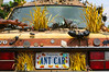 The Ant Car (amarilloladi) Tags: antcar automobile bugs comical wacky ants cars 7dwf windows whimsical quirky