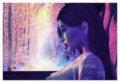 Colder Day By Day (Scarlett Rhea) Tags: snow snowy landscape window profile