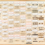Hans D.J. Wallengren Coleoptera 19 thumbnail