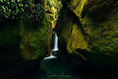Upper Chasm Falls (hillsee) Tags: waterfall ferns canyon moss green water light nature landscape tasmania autralia