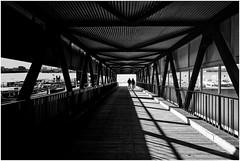 along with dividing line (ingrid.lowis) Tags: bw schwarz weis monochrome shadows schatten light licht hamburg hafen