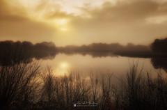 Niebla (Chencho Mendoza) Tags: laguna cospeito lugo amanecer