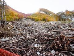 _A164483 (elsuperbob) Tags: abruzzo farindola rigopiano avalanche disaster mountains pescara landslide