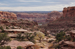 a smidge of river (rovingmagpie) Tags: utah moab goldbarcanyon canyon fb2017 coloradoriver amasaback