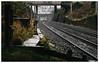 Climbing from Bloomfield (Gingydadtog) Tags: blackcountry class67 coseley coseleystation dbcargo diesel locomotive passengertrain train westmidlands