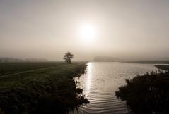 (CarolienCadoni..) Tags: sony sonyilcaa99m2 sal2470z mist mistymorning foggy fog tree water drenthe nederland netherlands november