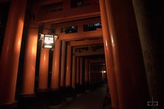 DSC_4492.jpg (cbouchon) Tags: kyoto pluie fushimiinaritaisha nuit temps japon japan night rain kyōtoshi kyōtofu jp